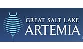 Translation company in Arizona USA: Bridging the Communication Barrier